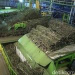 Bangun Pabrik Gula, Investor India dan Brunei Cari Lahan di Luar Jawa