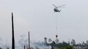 Kebakaran Hutan di RI Menurun dari 2 Juta Jadi 190 Ribu Titik di Tahun 2016