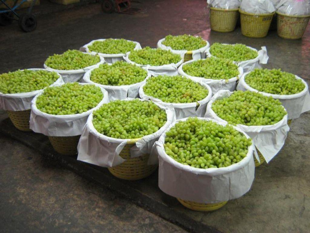 Wisata Beda di Thailand, Belanja Buah Segar di Pasar Induk