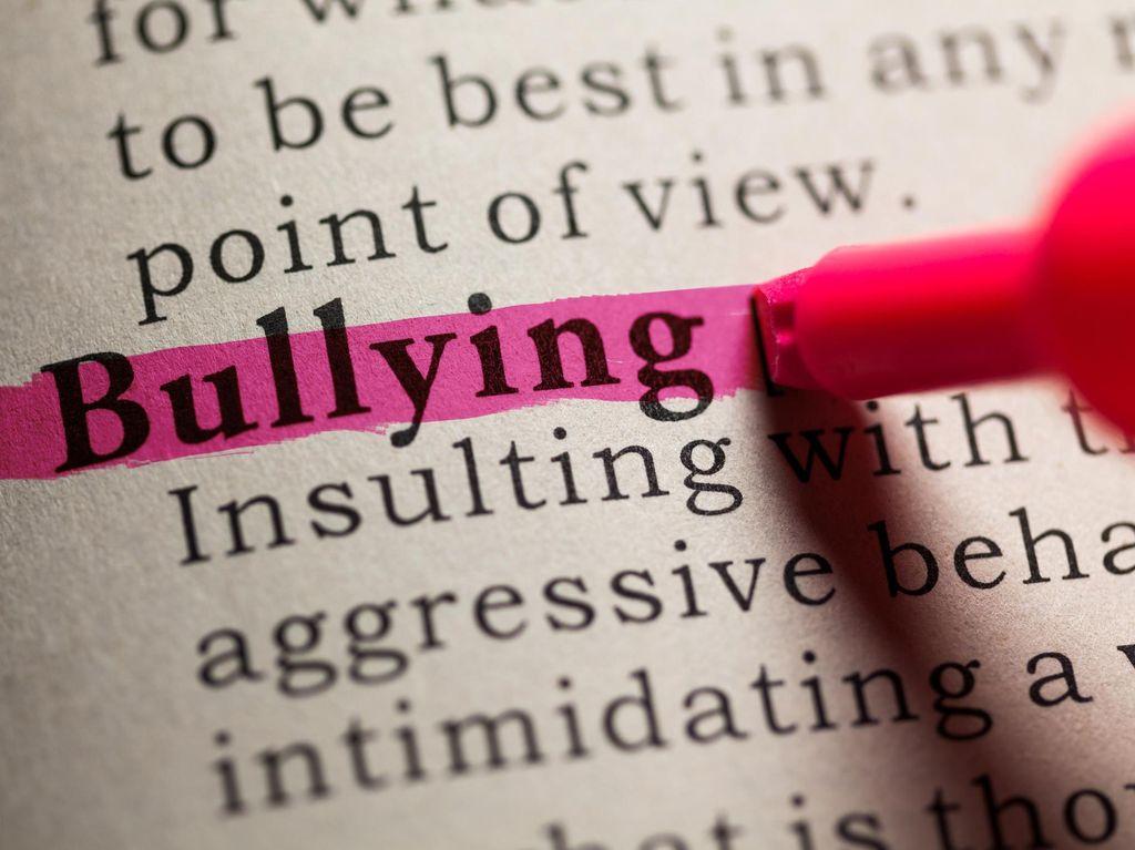 Kasus Bullying Pelajar Cium Kaki, Dewan Sentil Jabar Masagi Ridwan Kamil