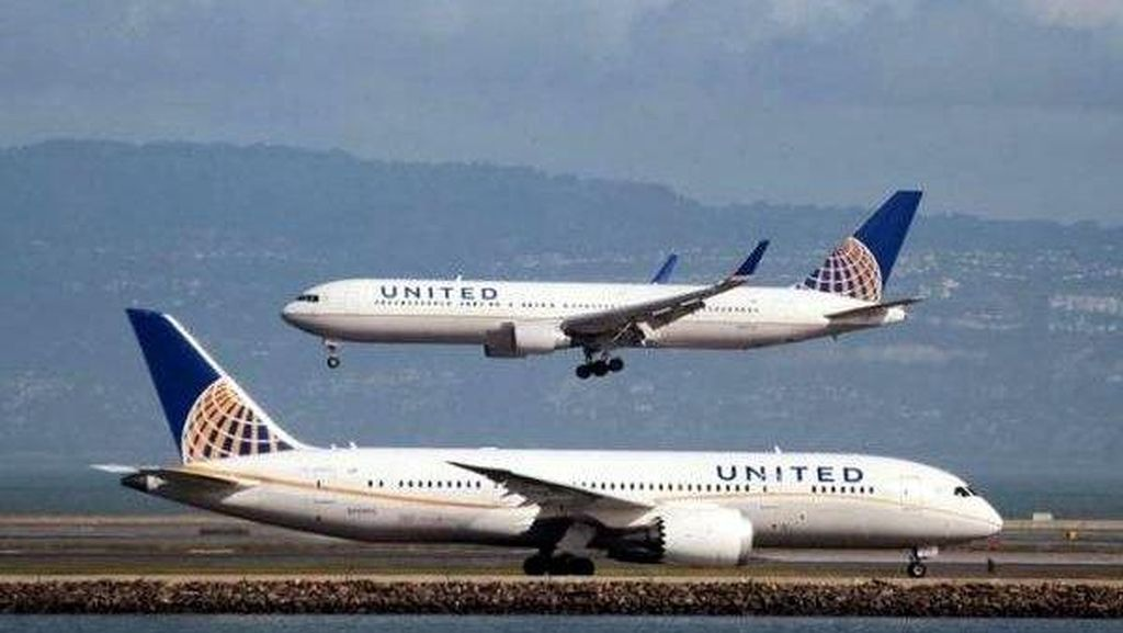 Penumpang United Airlines Disengat Kalajengking di Dalam Pesawat