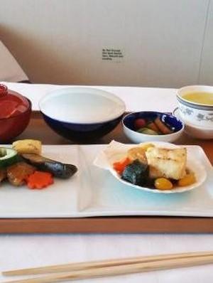 Traveler Kumpulkan Foto Makanan Pesawat dari Seluruh Maskapai