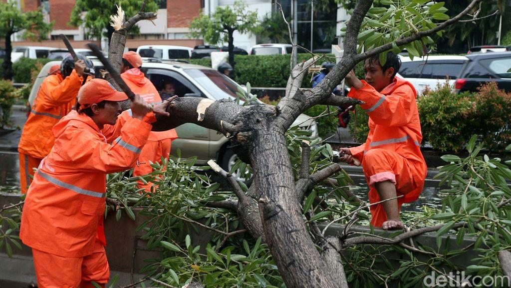 BMKG: Waspadai Hujan Deras Disertai Petir Berpotensi Terjadi Hingga 8 Desember