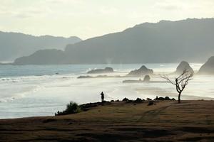 Bukit Merese dan Pohon Galau di Lombok
