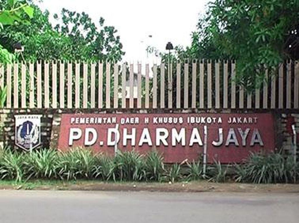 Komisi C: Kalau Pakai Logika, PMD Dharma Jaya Tak akan Dicabut