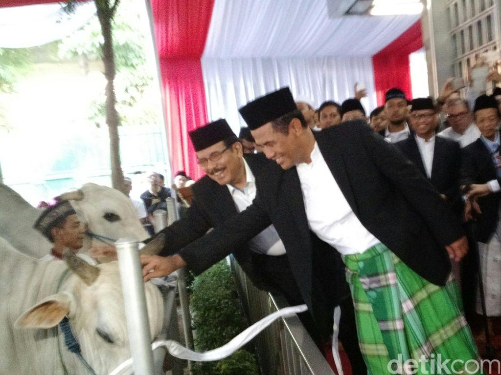 Tak Ada Pembagian di Masjid Istiqlal, Hewan Kurban Akan Didistribusikan Langsung