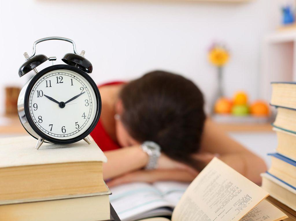 Tidur Siang Ada Banyak Tipenya Lho, Kamu Biasa Tidur Siang yang Mana?
