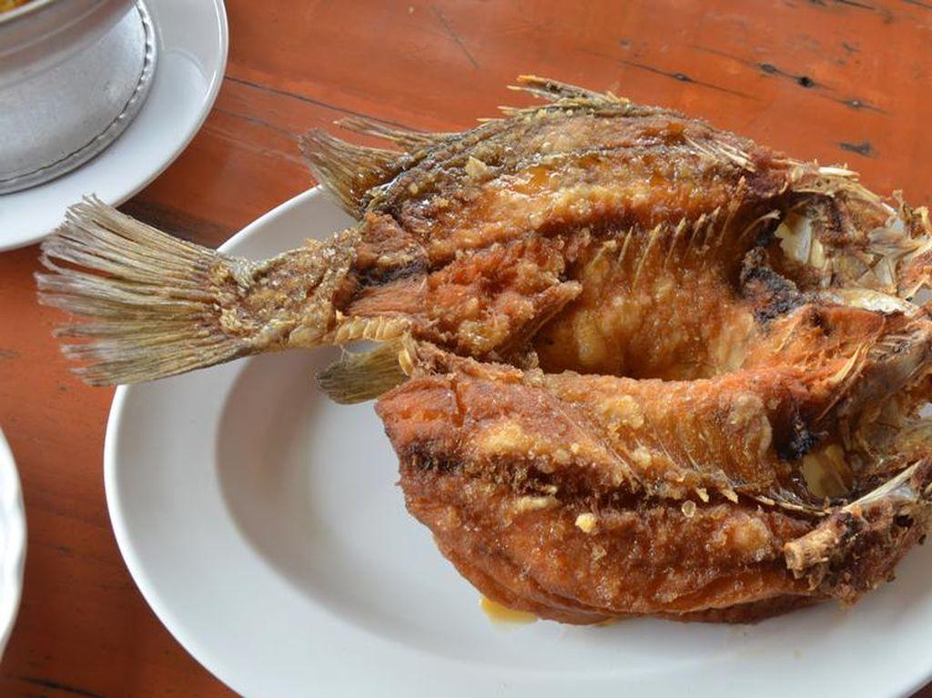 Ini Trik Mudah Goreng Ikan yang Garing Renyah Tanpa Percikan Minyak