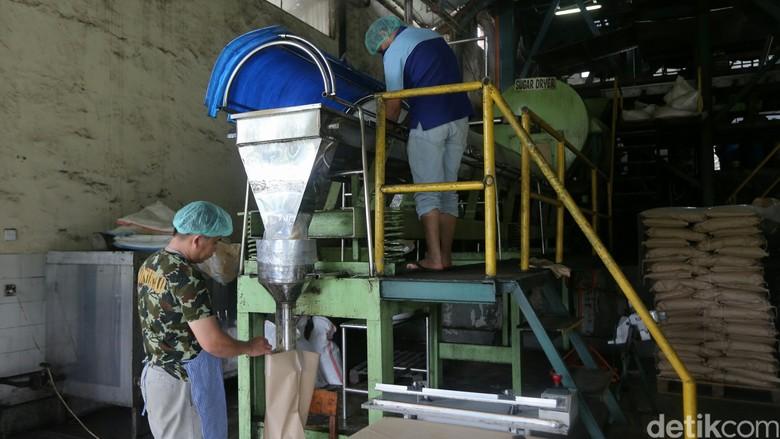 129 Pabrik Gula Zaman Belanda Gulung Tikar, Tersisa 50