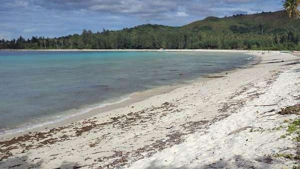 Ada Apa di Pulau Buru, Maluku?