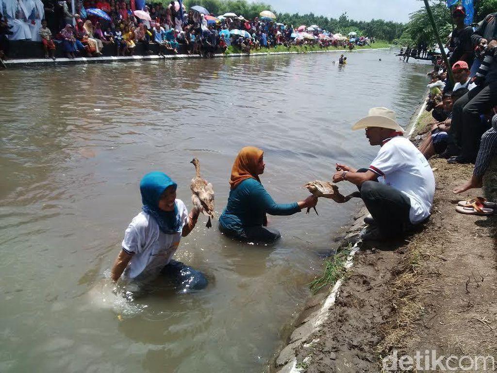 Lucunya Ketika Ibu-ibu di Pasuruan Ikut Lomba Menangkap Bebek di Sungai