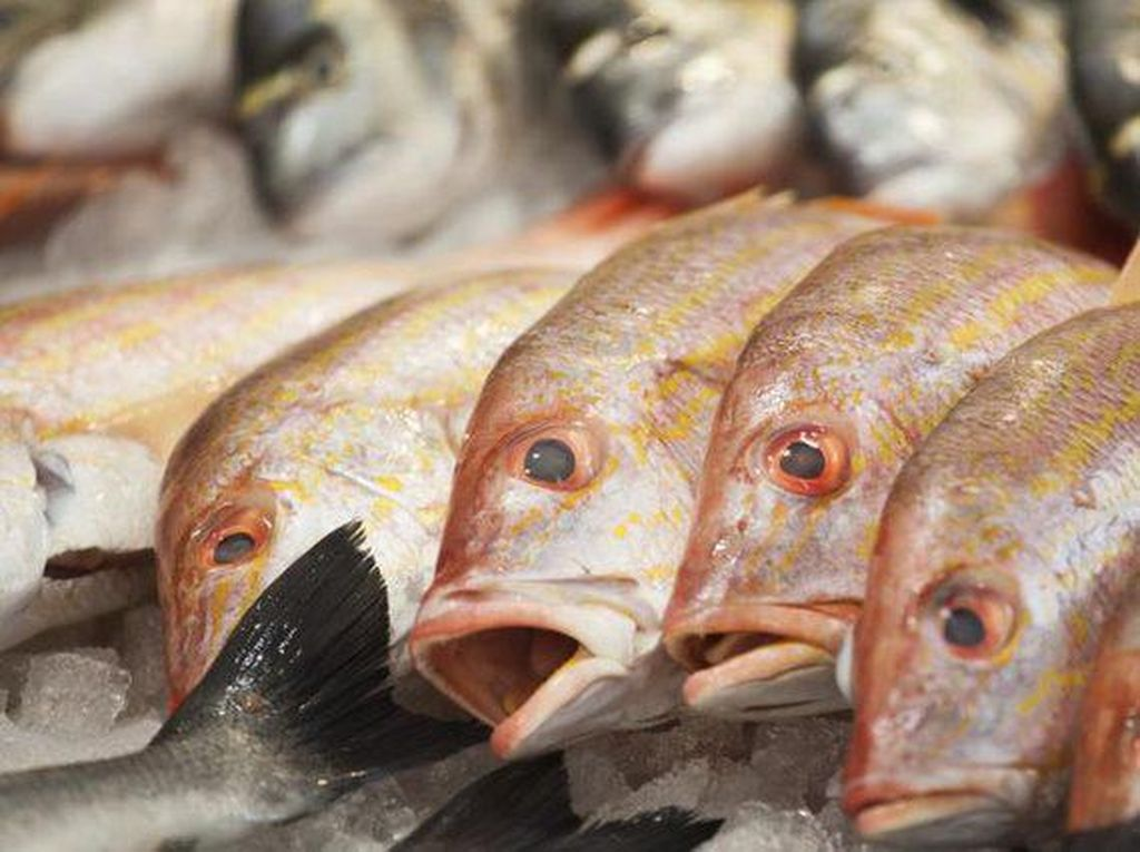 Mitos atau Fakta? Konsumsi Ikan dan Susu Bisa Bikin Masalah Kulit