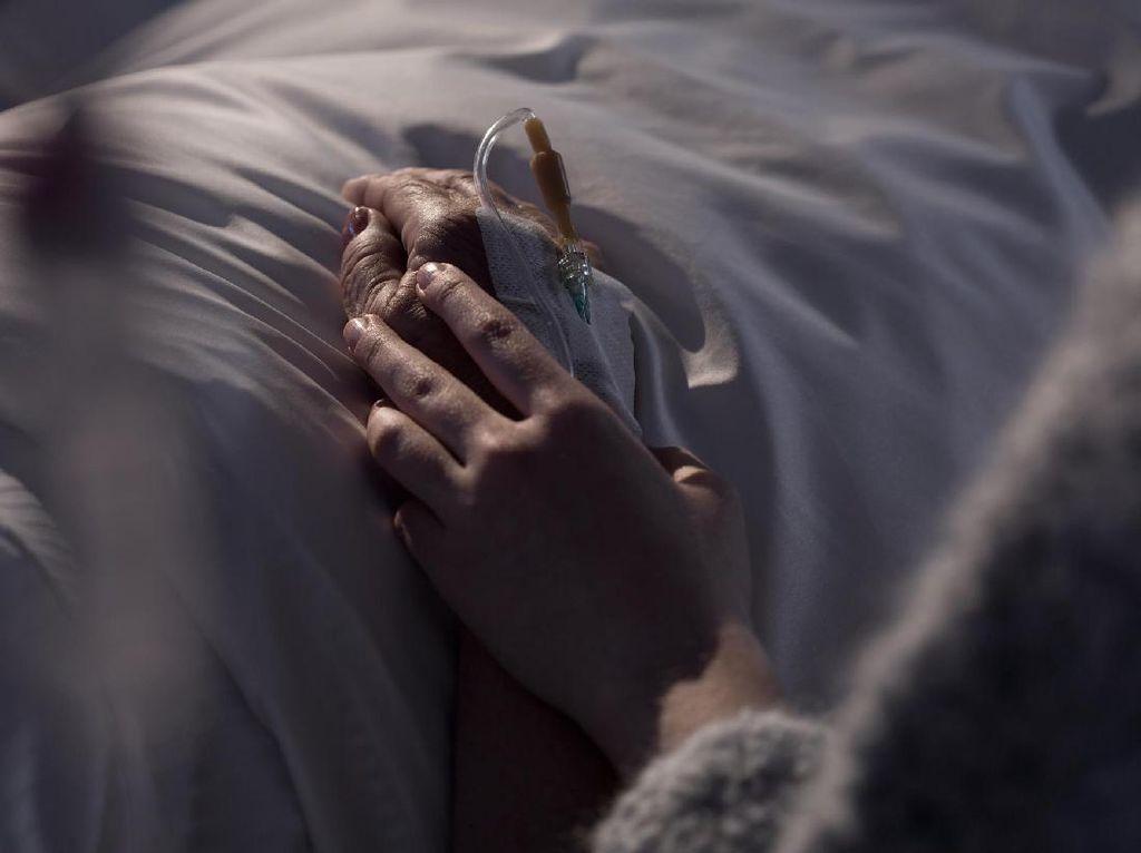 Pemprov Sulsel Libatkan Pakar Teliti Penyakit Misterius di Jeneponto