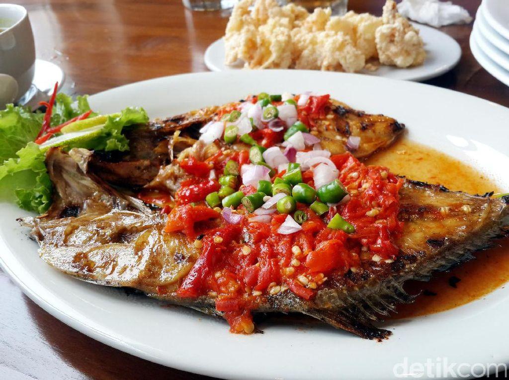 Pedasnya Ikan Aji-aji Bakar Rica dengan Taburan Irisan Cabai Rawit Khas Makassar