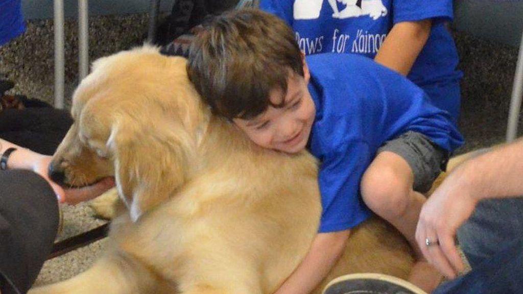 Anjing Ini Jadi Terapis Balita yang Memiliki Autisme
