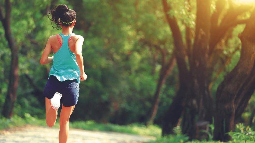 Belum Menentukan Resolusi Sehat untuk Tahun Depan? Coba yang Satu Ini