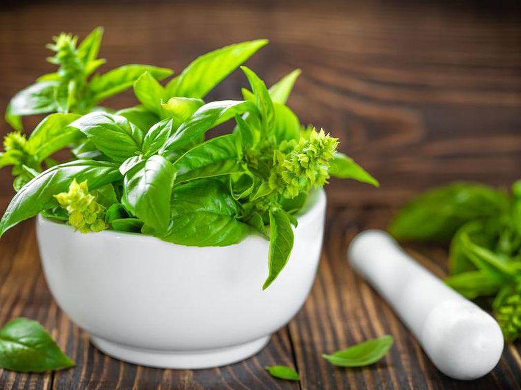 Teknologi Medis Canggih, Masihkah Cina Andalkan Herbal untuk Obat?