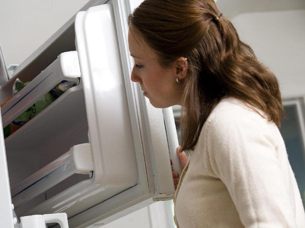 Obat Sisa Disimpan di Kulkas, Adakah Bahayanya?