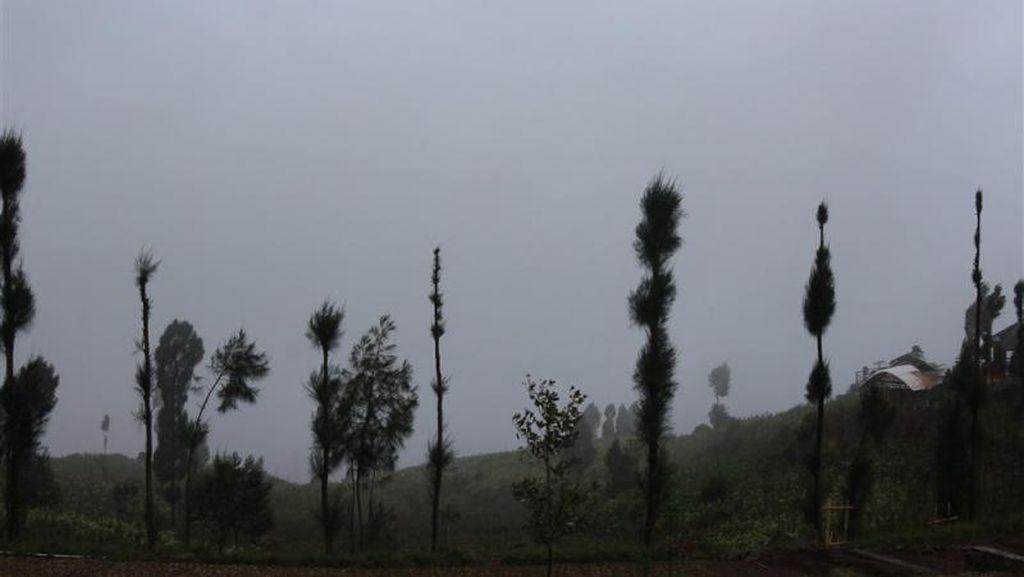 Menikmati Kabut Nan Syahdu di Dataran Tinggi Posong, Temanggung
