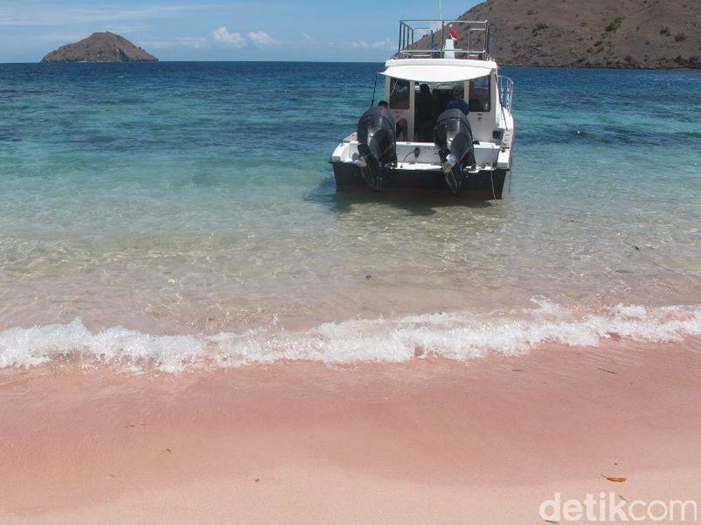 Bangga! Indonesia Punya Banyak Pantai Pink