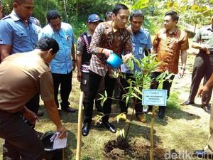 Ibas Adopsi Pohon di Hutan Kota Trenggalek