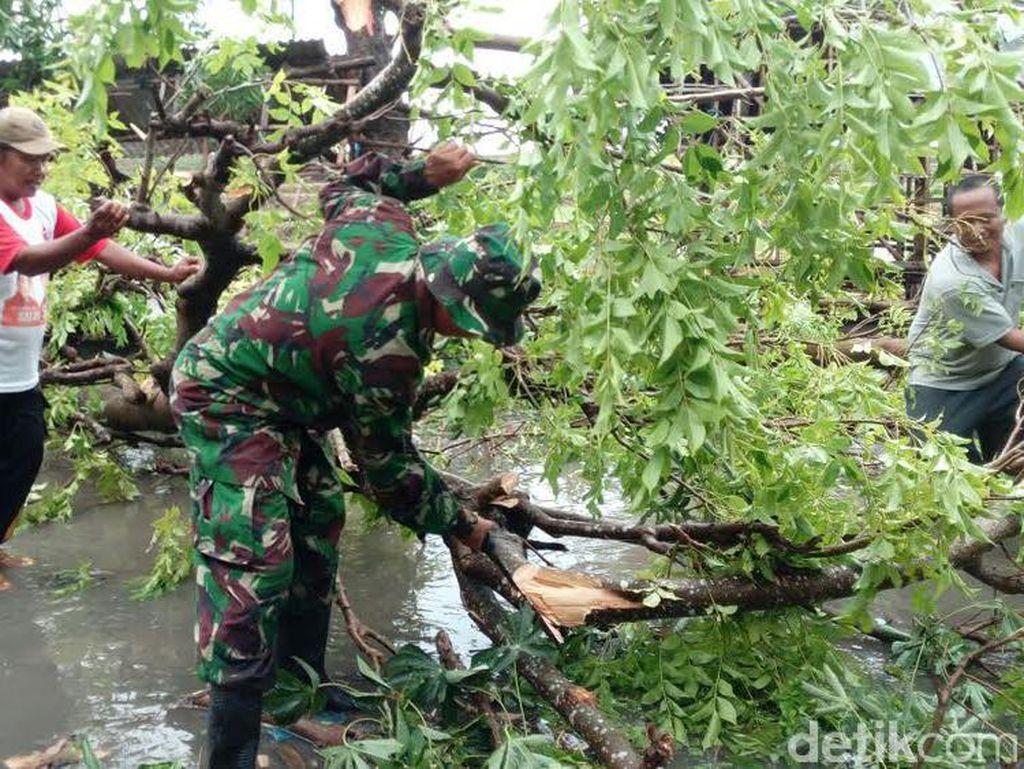 Puting Beliung Tumbangkan Pohon di Lamongan, Jalur ke Mojokerto Sempat Macet