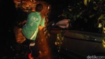 Pohon Tumbang di Semarang Timpa Mobil, Pengemudi Selamat