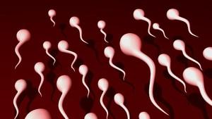 Bahan Kimia dalam Sabun Ini Bisa Bikin Kualitas Sperma Pria Buruk