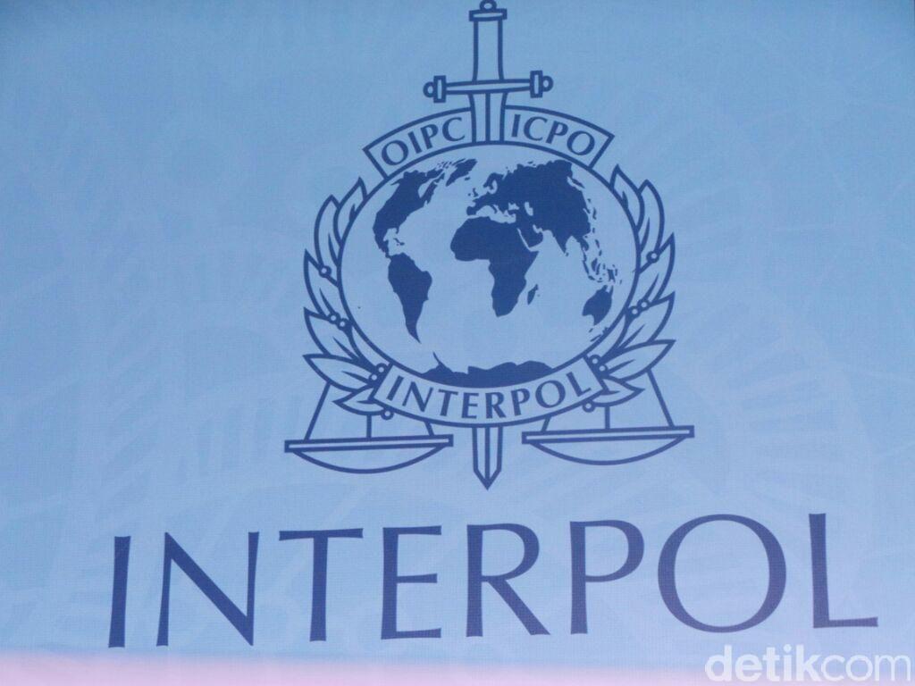 Buronan Interpol Asal India Ditangkap di Bandara Ngurah Rai Bali