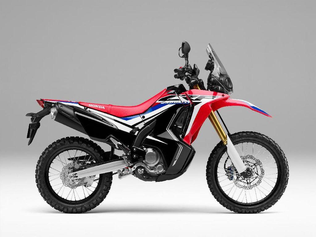 Tanggapan Honda Soal Kemungkinan CRF250L untuk Pasar Indonesia