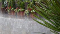 Silakan Cek! Daerah Diprakirakan Hujan Lebat di Jateng Hari Ini