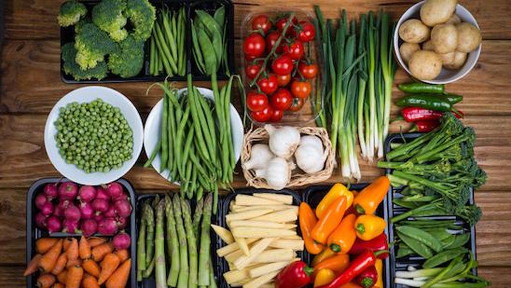 Studi Ungkap Daun Peterseli dan Seledri Bisa Jadi Kunci Cegah Diet Yoyo