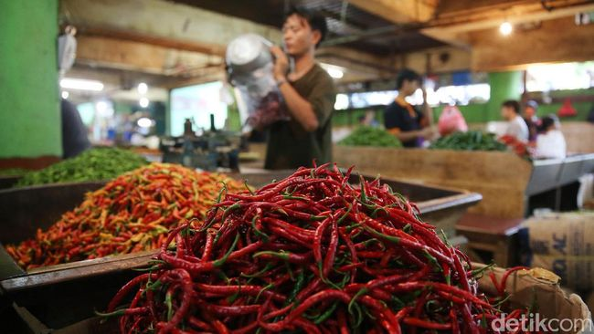 Cabai Sering Jadi Biang Keladi Tingginya Inflasi