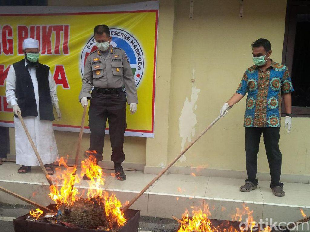 Polrestabes Medan Musnahkan 15 Kg Ganja dan 10 Kg Sabu
