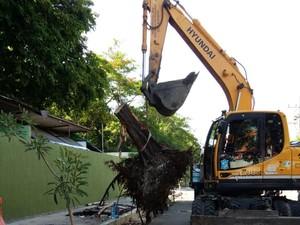 Pembongkaran Libatkan Alat Berat, Pohon Maut Sudah Lenyap dari Jl Setail