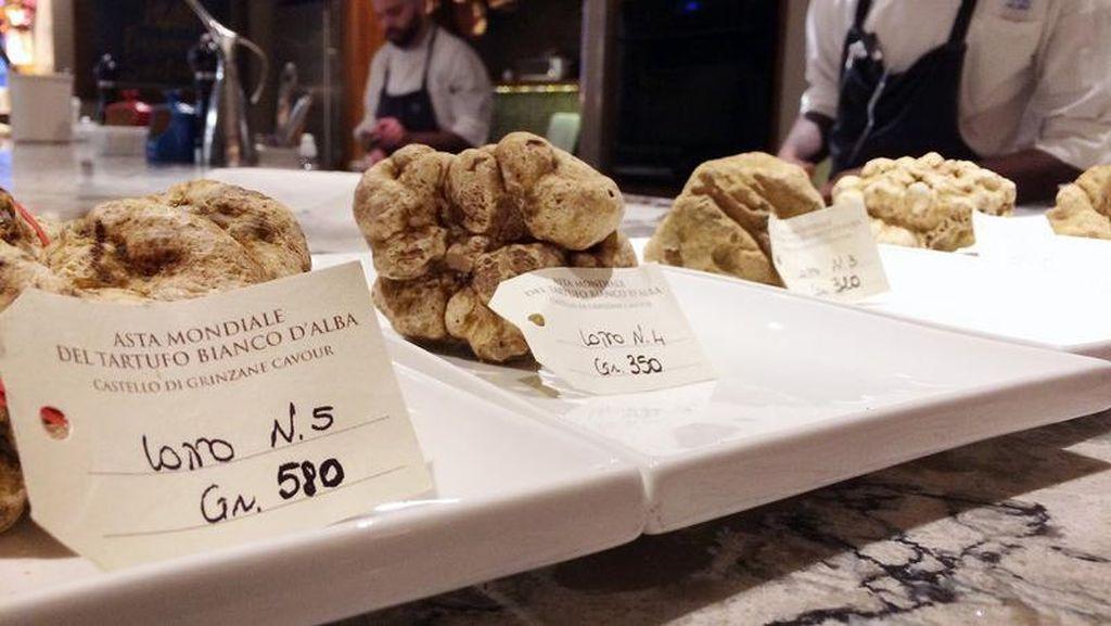 Pada Pelelangan Serentak di 2 Negara Ini, Jamur Truffle Laku Terjual hingga Rp 1,5 Miliar!