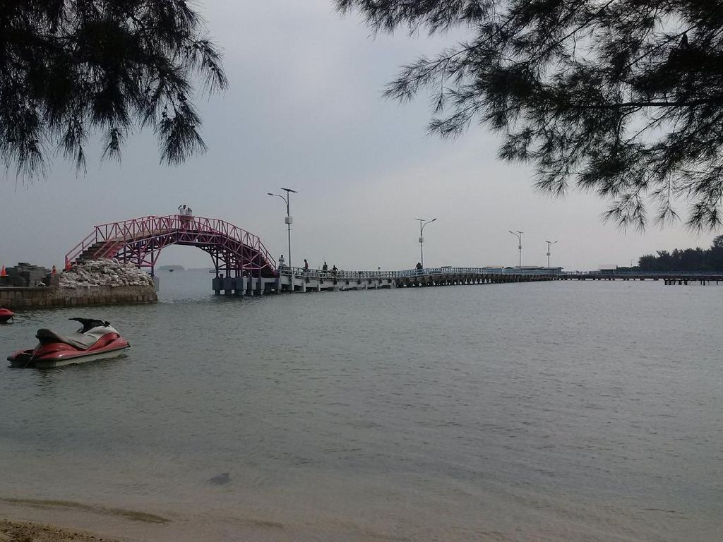 Bupati Kep Seribu Cerita Penyebab Krisis Ikan Segar di Pulau Tidung