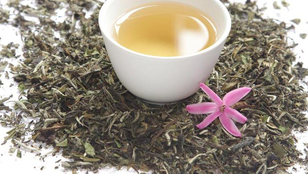 White Tea yang Sedang Populer Berkhasiat Turunkan Kolesterol hingga Sehatkan Jantung (2)