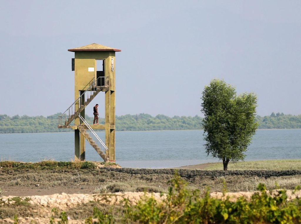 Baku Tembak dengan Penjaga Perbatasan Bangladesh, 2 Pengungsi Rohingya Tewas