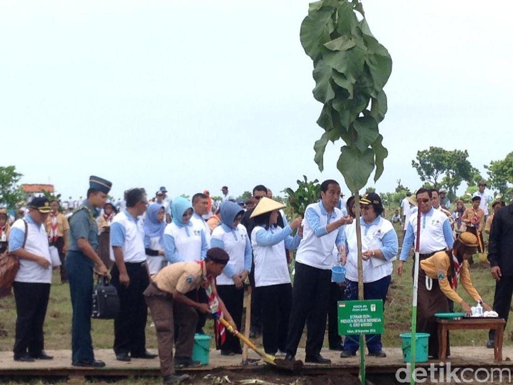 Tanam 237 Ribu Pohon Dalam Waktu 1 Jam, Indonesia Pecahkan Rekor Dunia