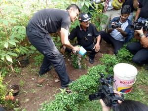 Tanam Pohon, Agus Yudhoyono Tekankan Pentingnya RTH di Jakarta