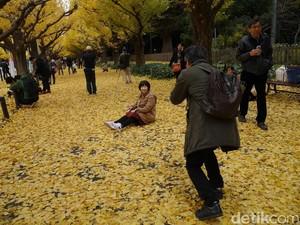 Bukan Mimpi, Musim Gugur Seindah Ini Ada di Tokyo