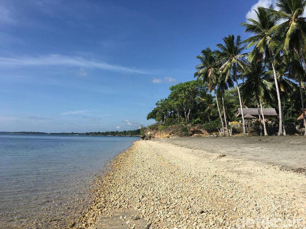 Selain dari Warisan, Penjual Klaim Pulau Lantigiang Karena Tanam Pohon Kelapa