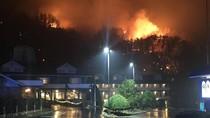 Kebakaran Hutan di AS Tewaskan 3 Orang, Ratusan Bangunan Rusak