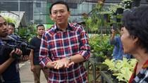 Cerita Ahok yang Diingatkan Jokowi untuk Ubah Gaya Bicara