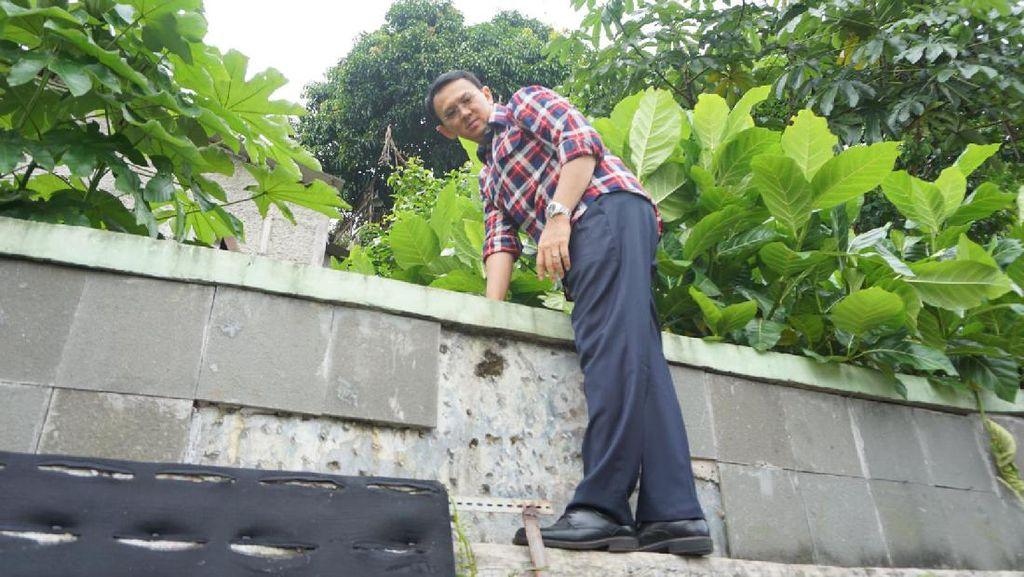 Aksi Ahok Panjat Tembok Lihat Sungai di Pasar Minggu