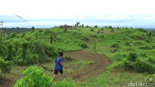 Banyuwangi Ijen Green Run 2016, Suguhan Wisata Alam Berbalut Olahraga