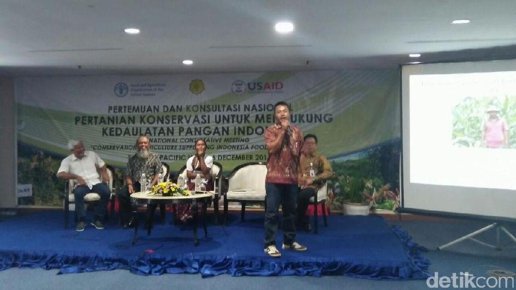 Pakai Sistem Ini, Produksi Petani Jagung di Lombok Naik Jadi 5,6 Ton/Hektar