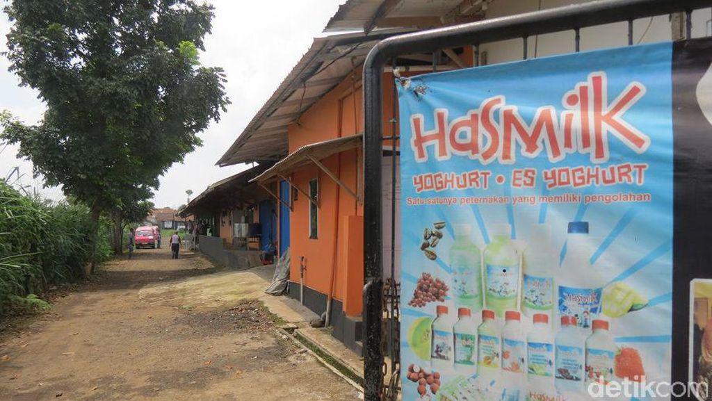 Liburan Keluarga ke Sukabumi, Ayo Minum Susu Segar