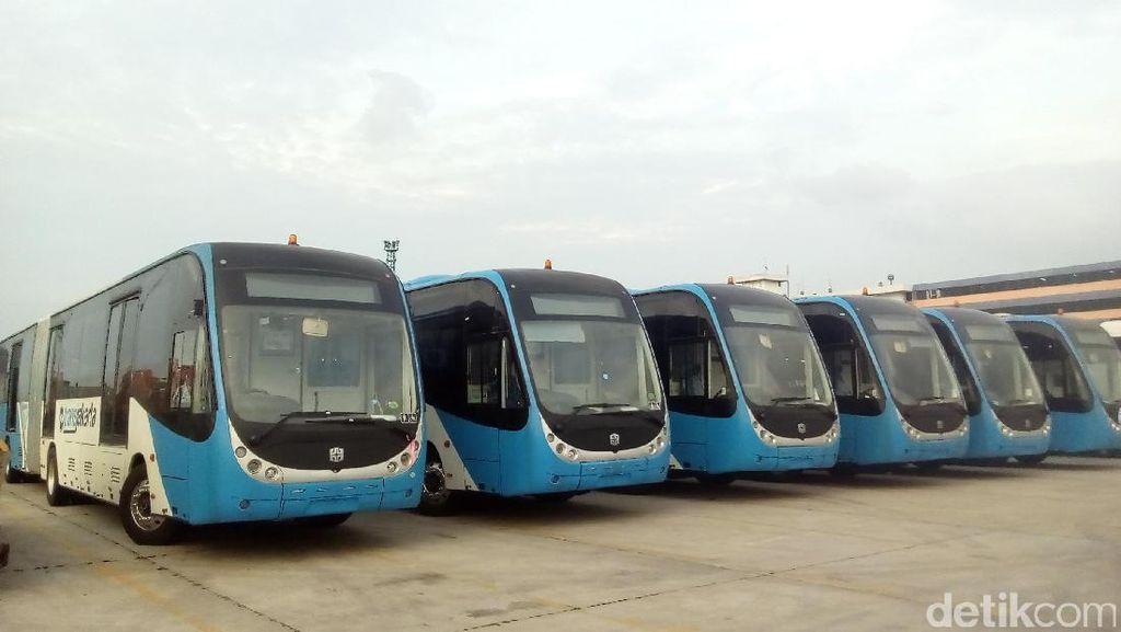 Begini Penampakan 23 Bus Zhongtong yang Parkir di Tanjung Priok